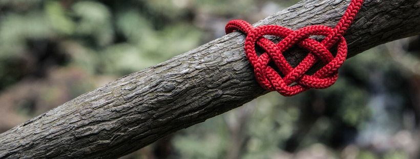 Connecting for good heart on a branch