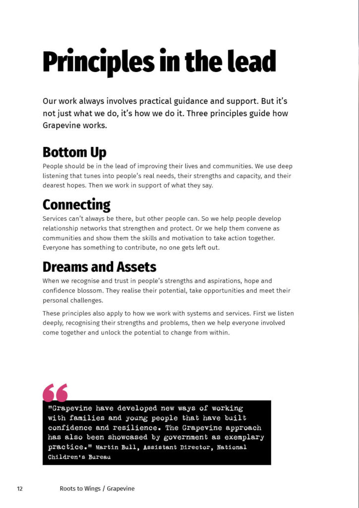 Grapevine Impact report page 12