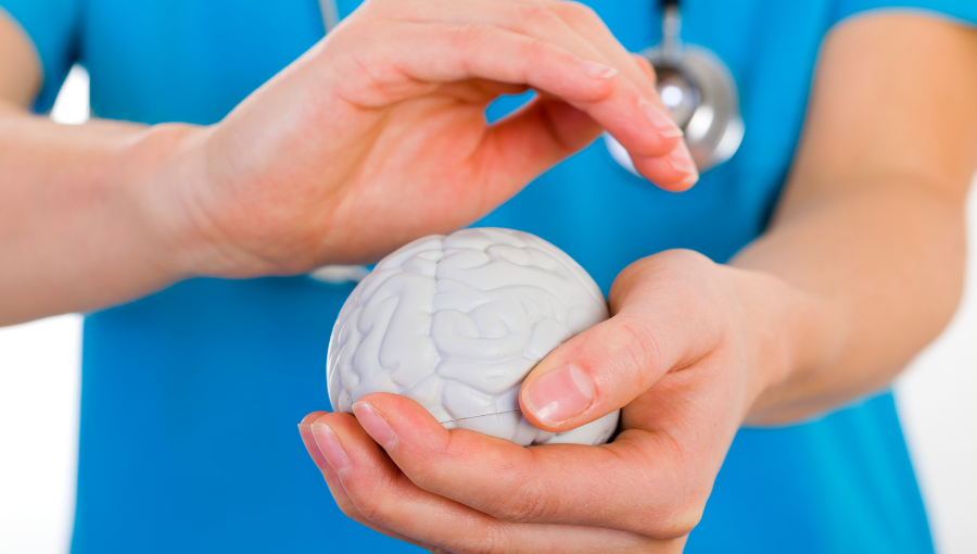 A medical professional in a blue uniform and stethoscope holds a model of a brain in their hands