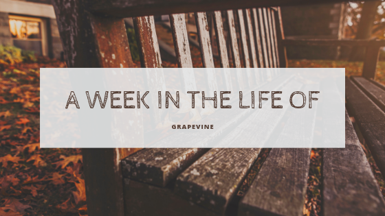 a week in the life of