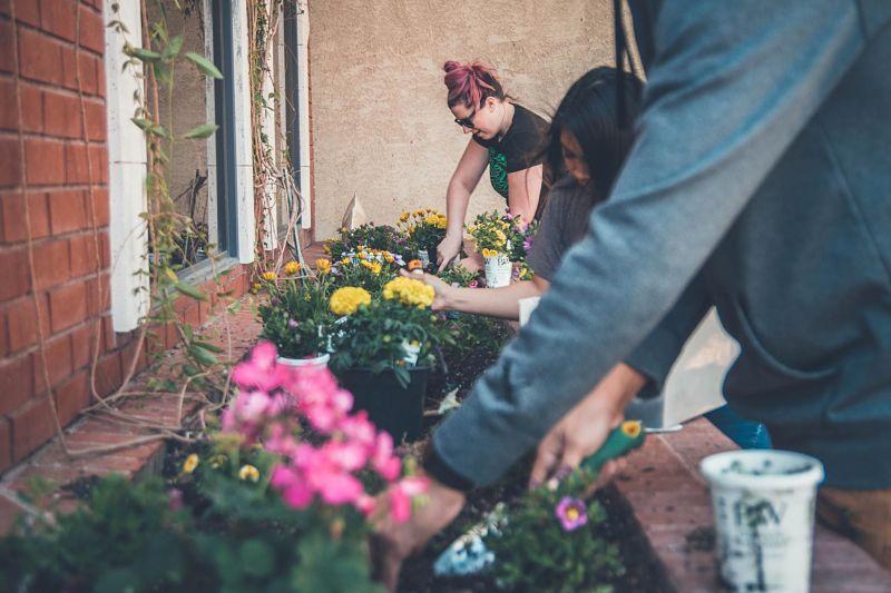Neighbours tend to a community garden