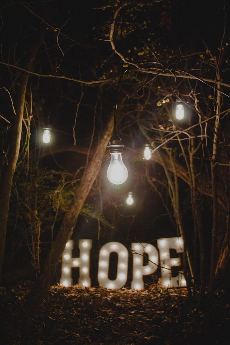 Light bulbs hang in a tree above the word hope. Image by Ron Smith on Unsplash
